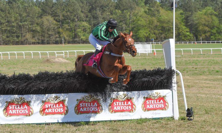 Carolina Cup Horse Race